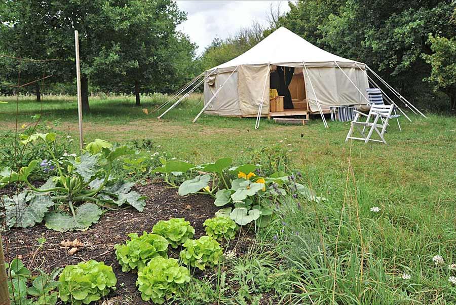 thumb camping yurt moestuin 1 thumb camping yurt moestuin 1