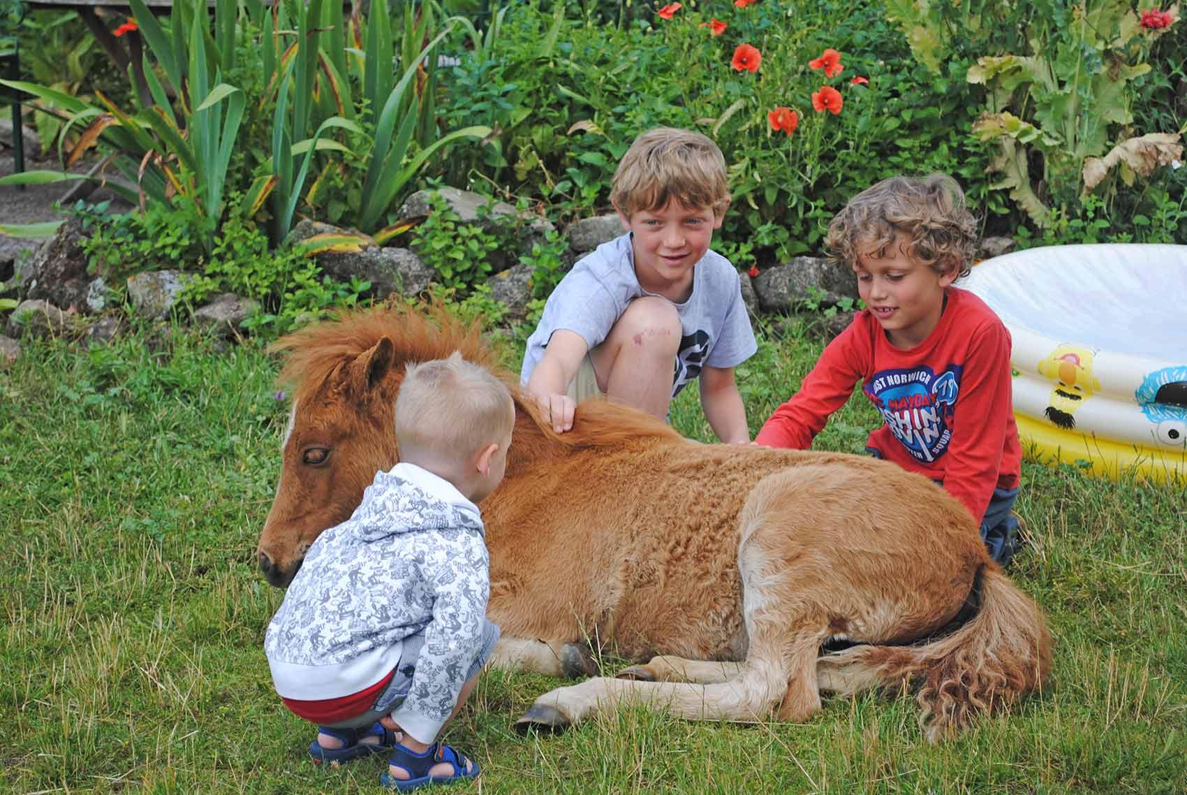 Kinderparadijs, jongetjes met veulen, Brénazet, Allier, Auvergne