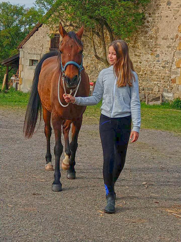 activiteiten pony meisje activiteiten pony meisje